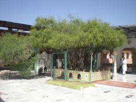 Dargah of Hazrat Khwaja Hamid-ud-din Nagauri (R.A)